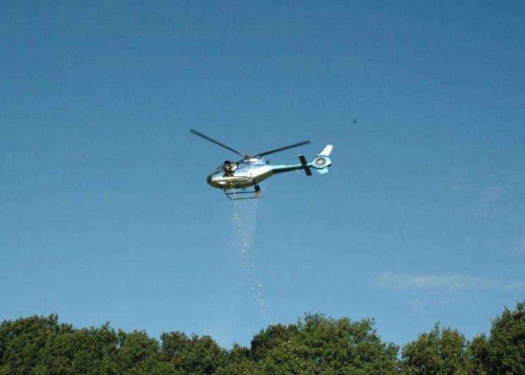company guide | activities | Heliflight ball drop - Heliflight Operations