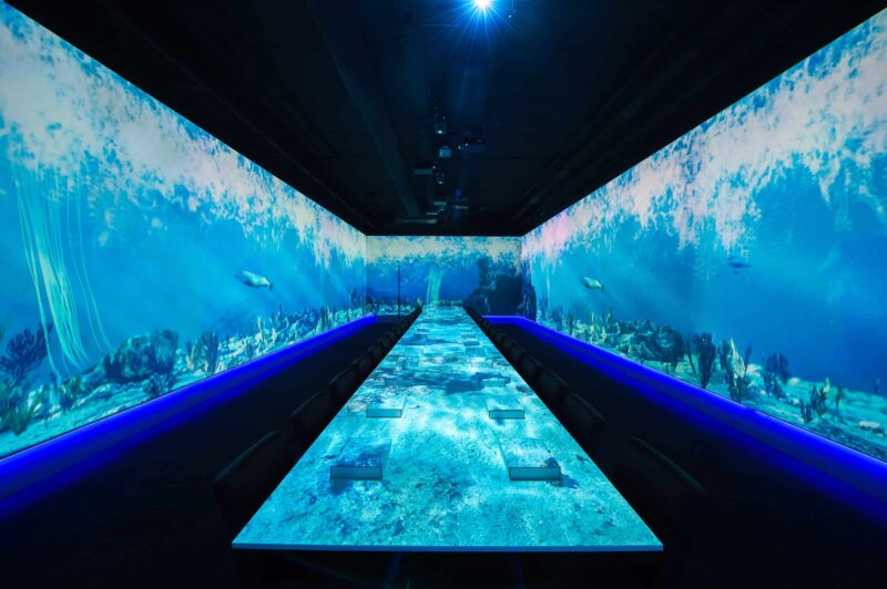 Aquarium - dinner - projectie - eten