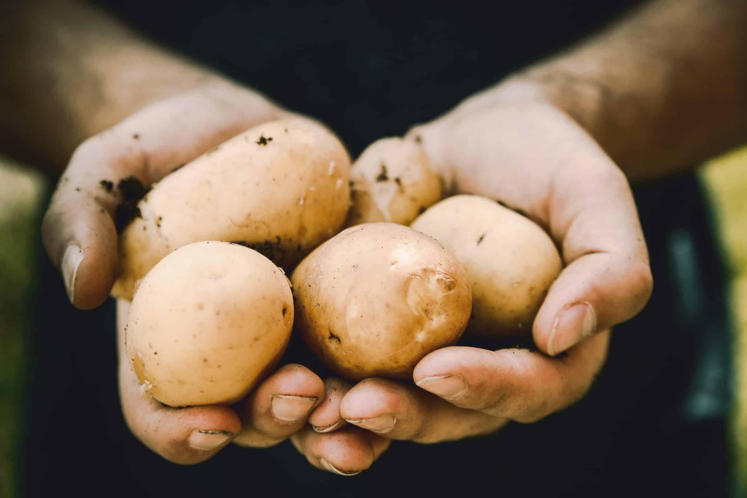 Super hallo - aardappels