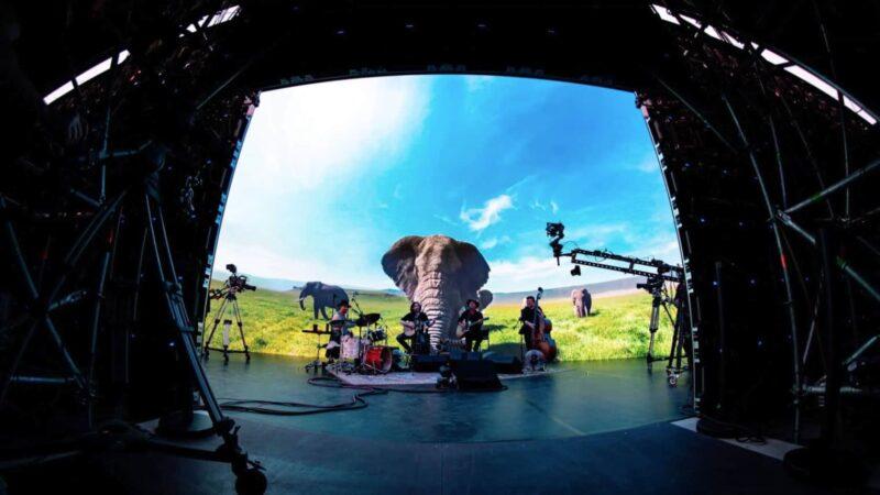 Band die optreedt voor een ledscherm waarop olifanten in de savanne te zien zijn
