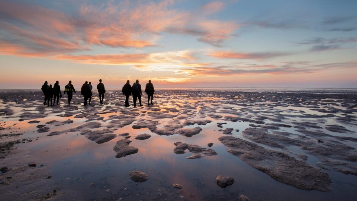 Wadlopen in Friesland - Photo: Elroy Spelbos