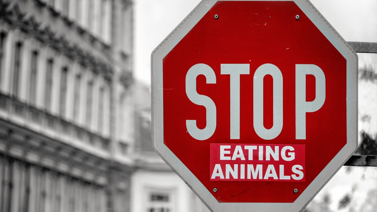 STOP eating animals verkeersbord (foto- Simon Berger) - foodtrends