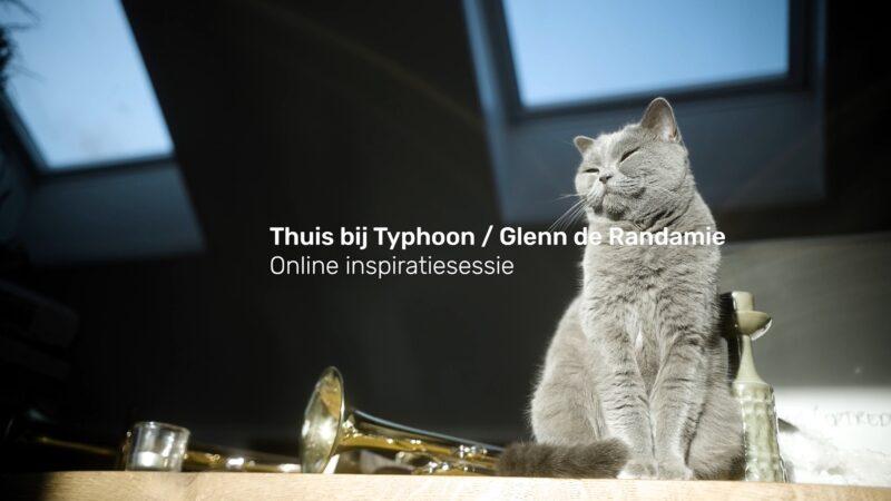 Thuis bij Typhoon poes naast een trompet