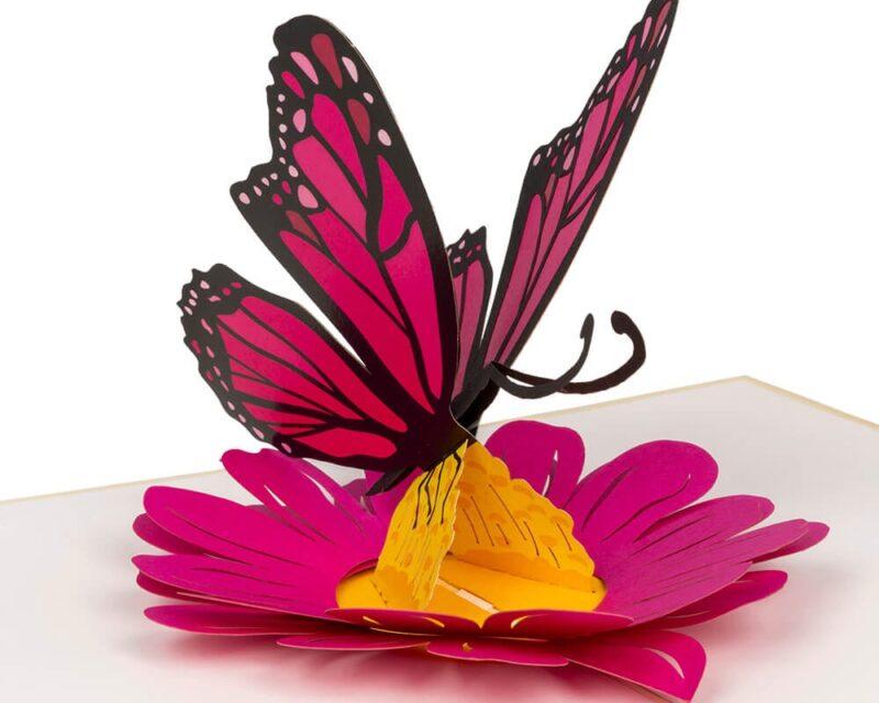 Hartensteler-Vlinder geknipt uit papier in kaart