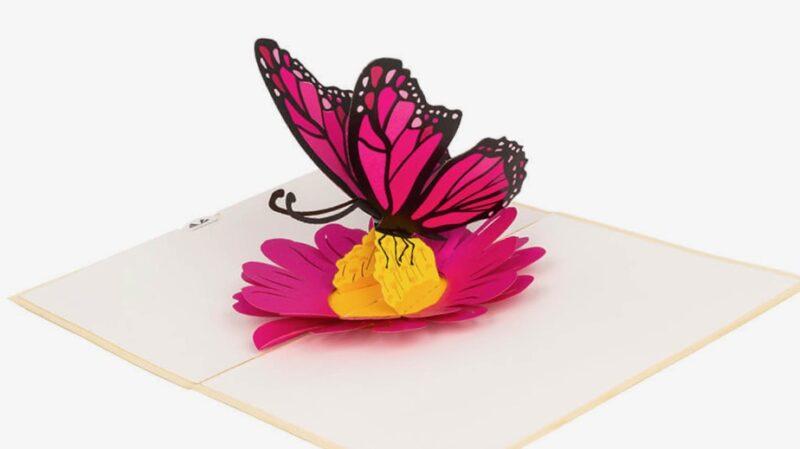 Hartensteler-Vlinder op bloem in kaart