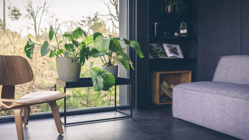 Cuber huiskamer met planten overnachting in de natuur