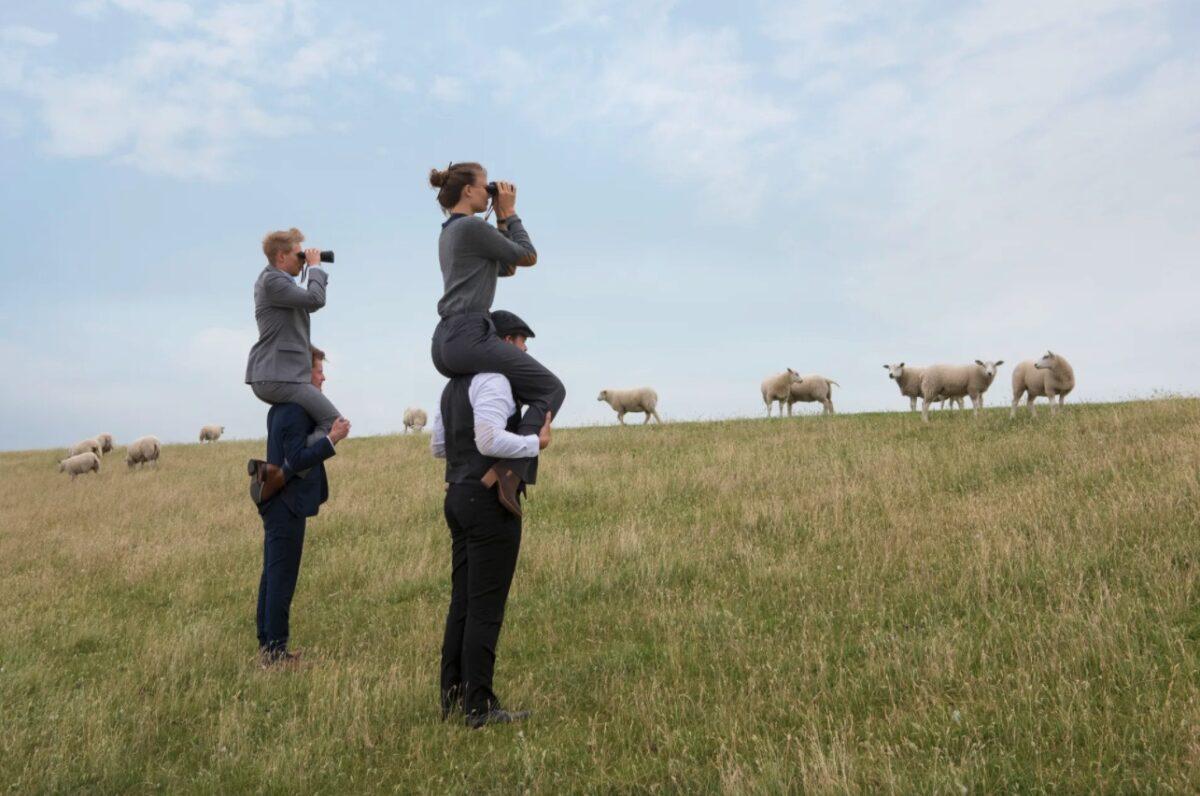 Meet in Friesland - mensen met iemand op hun nek met een verrekijker in een landschap met schapen