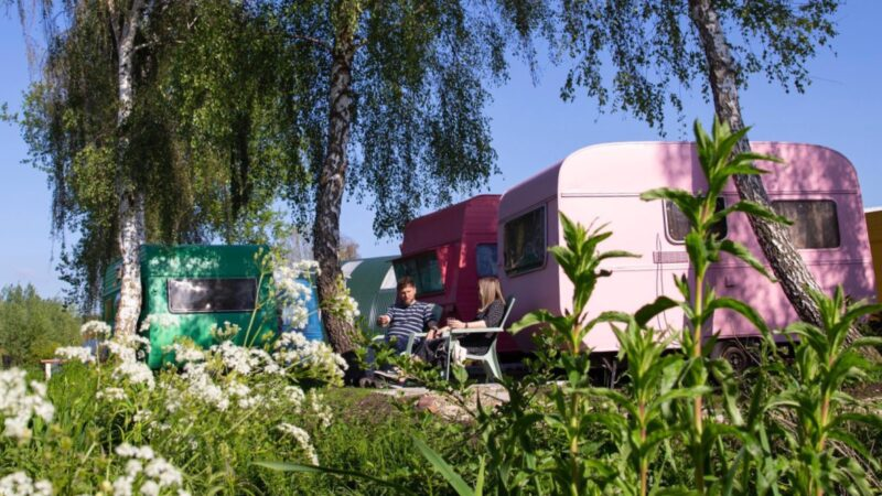 Tuinhotel Tralala gekleurde caravans tussen de bloemen