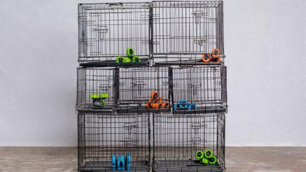 Robots in Captivity Buitenplaats Doornburgh